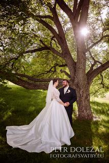 svatební foto - slunce prosvítající přes větve stromu