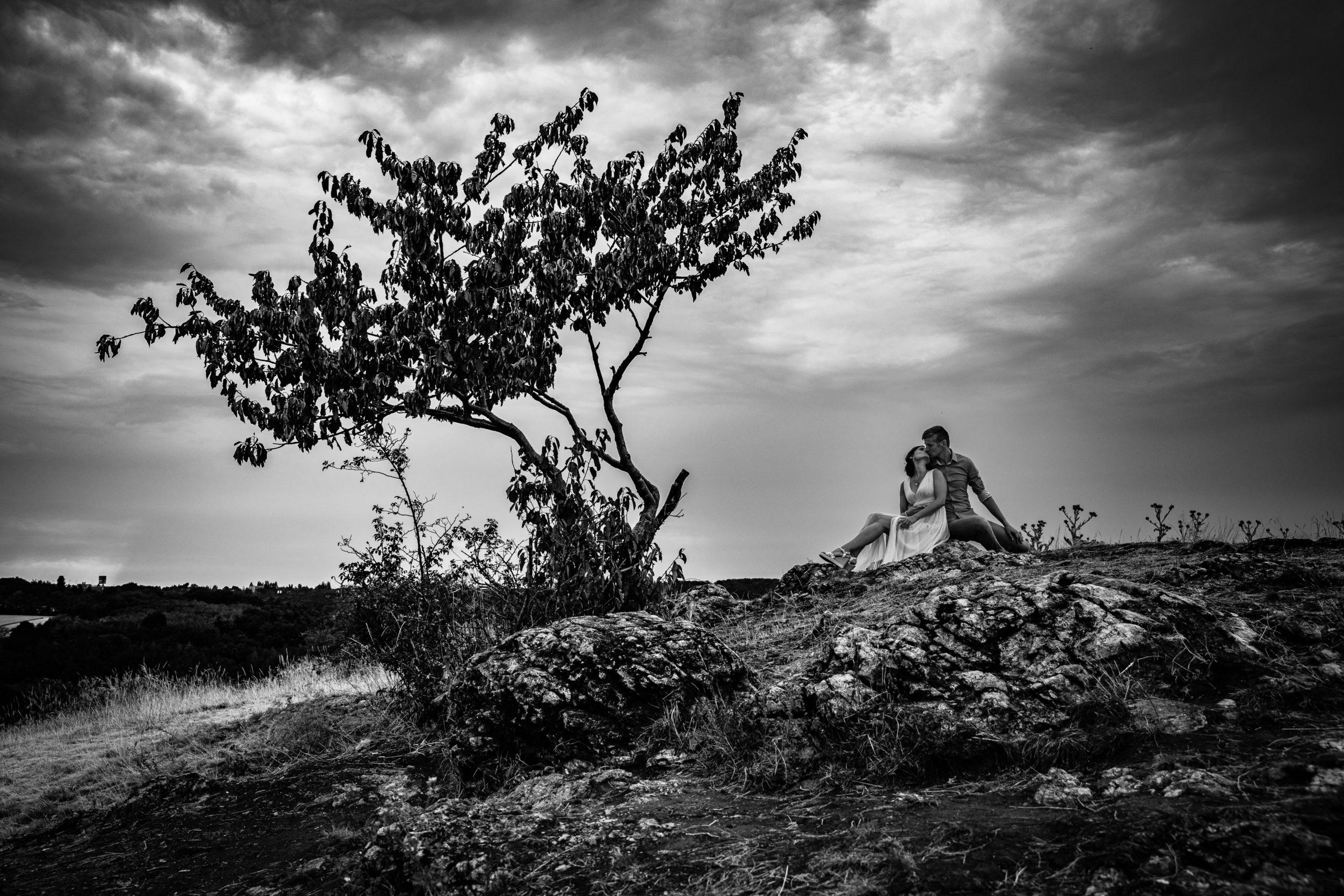 černobílá úprava fotografie s přírodou