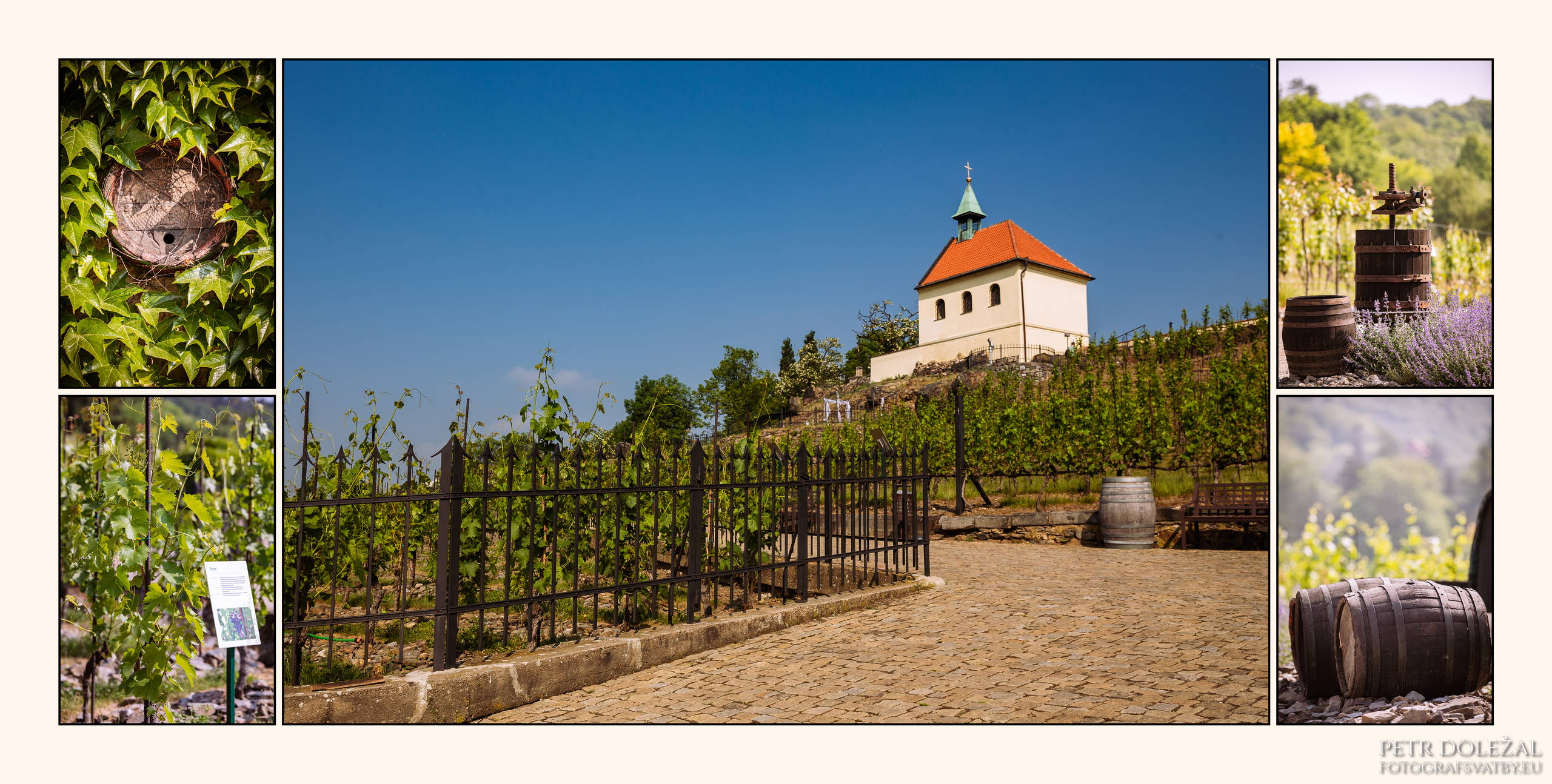 Svatební místa Praha 7 - Botanická zahrada Praha