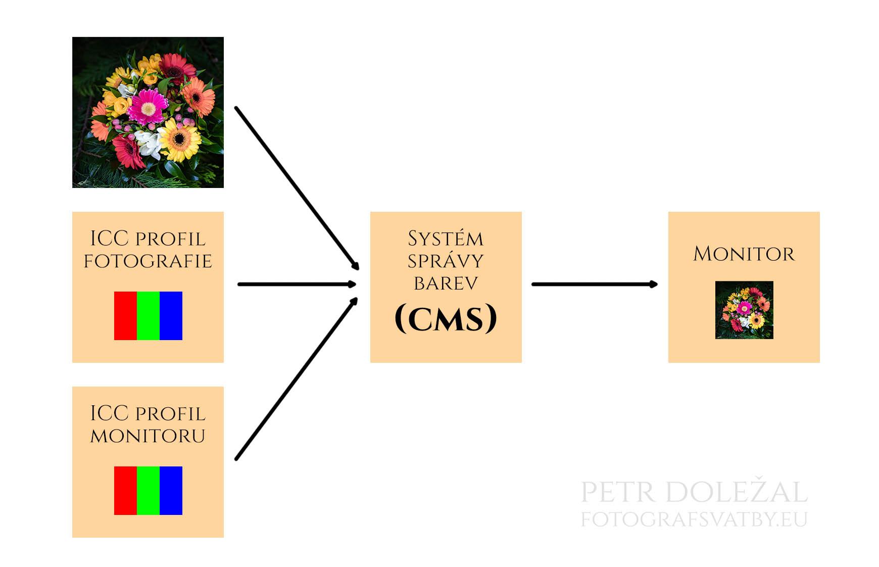 Systém správy barev