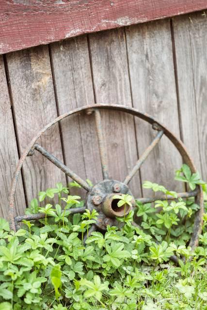 Staré kolo na dvoru Trojanova mlýna