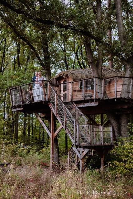 Tree house v Green Valley